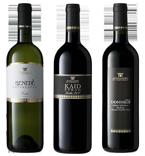 Wijngaarden op Sicilië