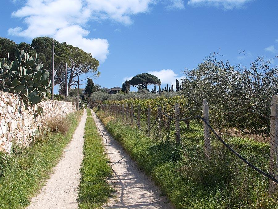 Vakantiewoning Casa nell'antico baglio in het kustplaatsje Balestrate op Sicilië