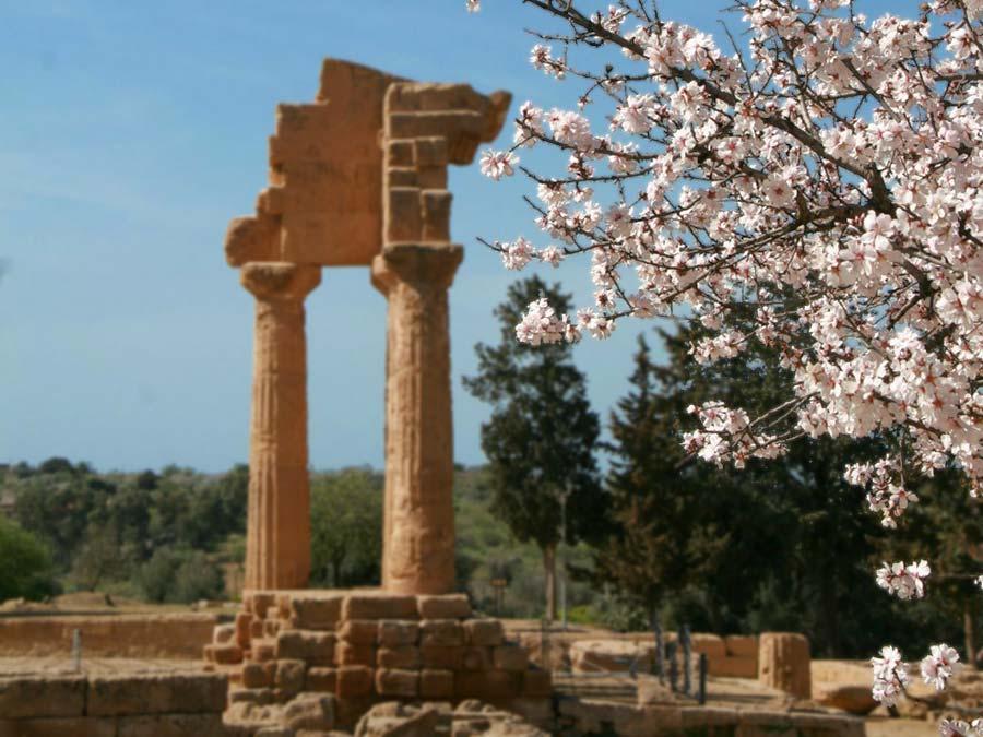 Sagra del mandorlo in fiore in Agrigento