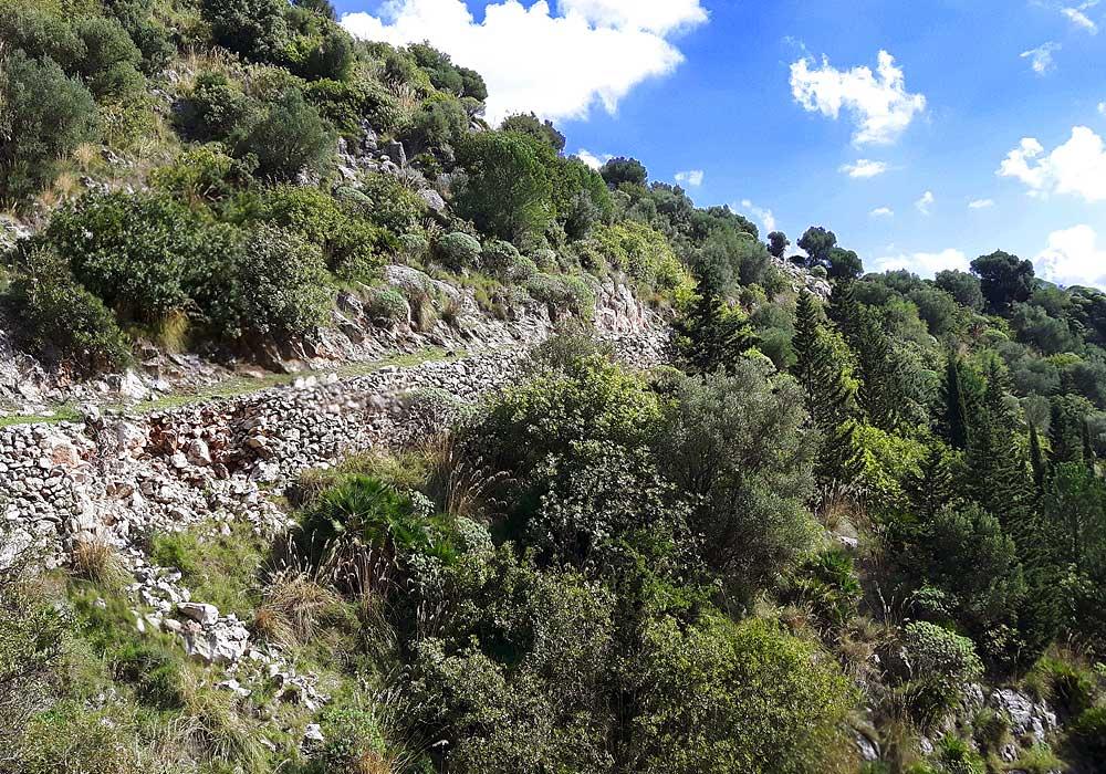 Monte Palmeto in oktober